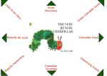 The Very Hungry Caterpillar (Kindergarten)